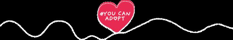 Diagrama adoption #YouCanAdopt